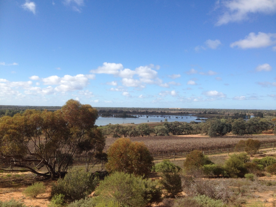 Banrock Station wetlands, Riverland, South Australia