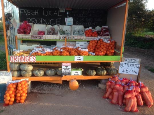 Roadside fruit stall, Riverland, South Australia
