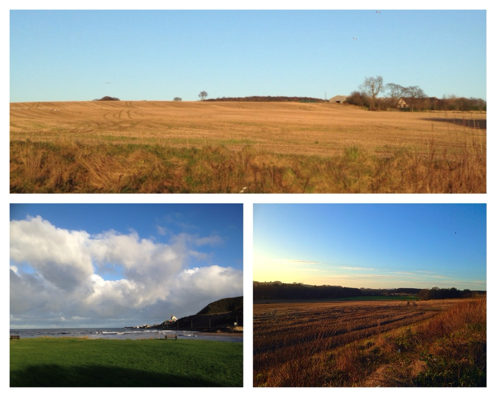 Scottish farmlands post harvest near the town of Macduff at the mouth of the River Deveron.