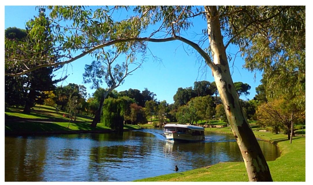 The Popeye, River Torrens, Adelaide