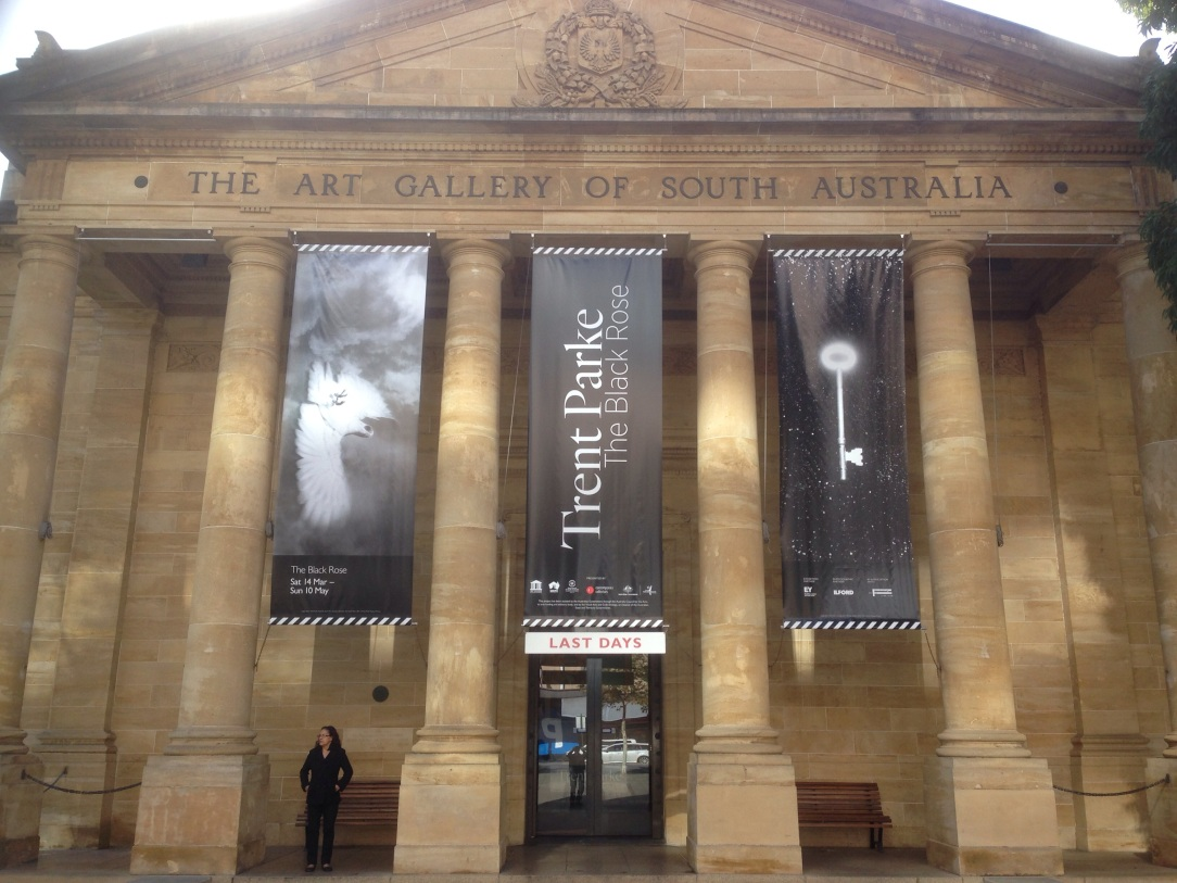 Art Gallery of South Australia, Black Rose