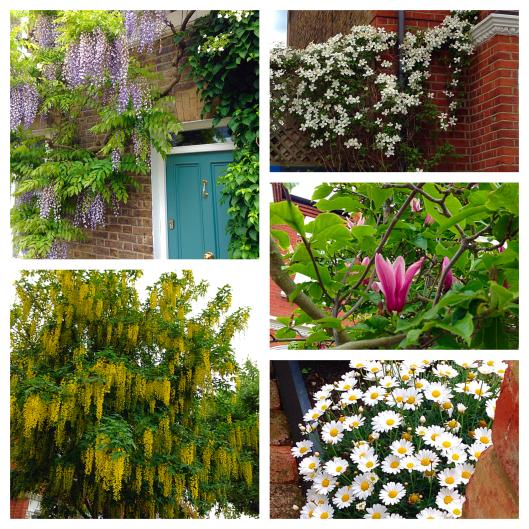 Spring flowers London