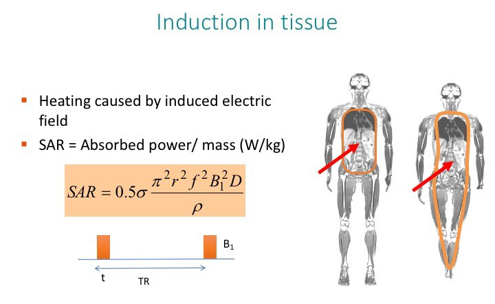 RF induction and SAR in MRI, MRI from Picture to Proton