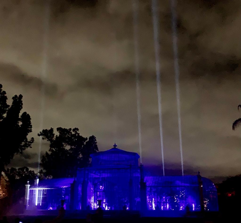 Illuminate Adelaide   Life cycles  Botanic Garden illuminated glasshouse